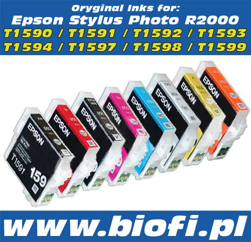 Genuine Epson Consumable Inks Epson R2000